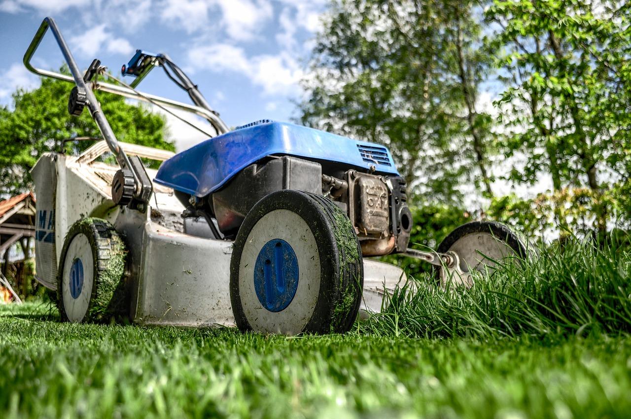 Kosiarki do trawy – dostępne modele, charakterystyka, zastosowanie